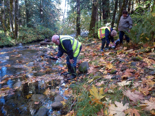Water Quality Monitors in the Englishman River Watershed