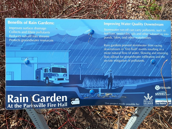 A Rain Garden Grows in Parksville